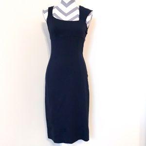 NWOT Paige Black Label Navy Pencil Dress